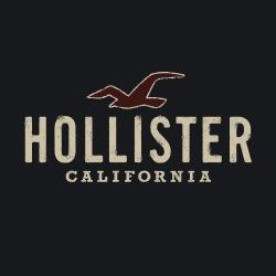 official Hollister Co.